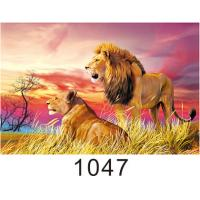 China Custom 3D Lenticular Printing 60*80cm / Wall Poster 3D Animals Photos wholesale