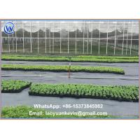 Commercial Landscape Fabric: Ground Cover Net Commercial Grade 880 Sq Ft Roll Landscape & Erosion Control Fabric Of