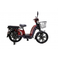 China Steel Frame 48v 350w Adult Electric Bike 9 Mos Tube Controller wholesale