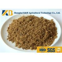 China GMP Pure Natural Fish Meal Powder / Animal Feed Additives 65% Protein Content wholesale