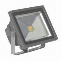 30w led floodlight high lumen replace halogen projector of bolelite. Black Bedroom Furniture Sets. Home Design Ideas