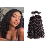 Remy Brazilian Water Wave Hair Extensions , Smooth Water Wave Curly Hair