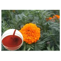 Buy cheap Tagetes Erecta Flower Natural Flower Extracts Powder Preventing Eye Health from wholesalers