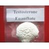 China estosterone Enanthate Raw Testosterone Powder wholesale