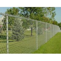 China High Strength Decorative Chain Link Fence , PVC Coated Wire Mesh For Cages wholesale