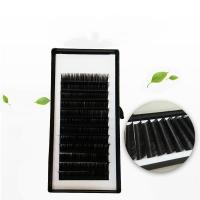 Buy cheap wholesale lashes private label korean pbt silk individual eyelash extensions from wholesalers