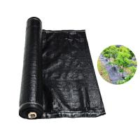China Recyclable Black Plastic Ground Cover , PP Woven Fabric Roll For Agriculture / Garden wholesale