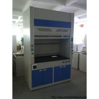 China Safety Lab Fume Hood Window Lift Freely With Hidden Fluorescent Lamp wholesale