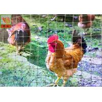 China Gray Plastic Poultry Nets, Plastic Poultry Netting, 1M High, 30M Length, Garden Mesh on sale