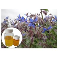 Buy cheap Omega 6 Cosmetic Plant Extract , Borage Oil Supplement For Skin Disorder from wholesalers
