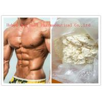 China White Powder High Purity Human Steroid Hormones For Sex Enhance CAS 224785-91-5 wholesale