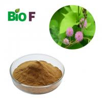 China Cosmetic Powdered Herbal Extracts Mimosa Pudica Powder For Skin Care Products wholesale