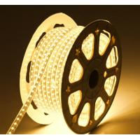 China LED Flexiable strips 8mm PCB width W WW color UcL Approved high brightness addressable wholesale