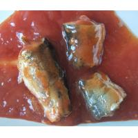 Buy cheap Canned food Canned Fish Canned Sardine/ Tuna/ Mackerel in tomato sauce/oil/ from wholesalers
