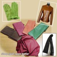 China Offer Finished Leather Skin on sale