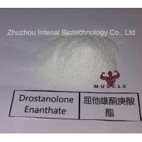 Buy cheap Stronges Steroid Drostanolone Enanthate / Masteron Enanthate Powder For Cutting Cycles CAS 472-61-145 from wholesalers