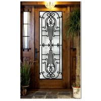 China entrance door design  Wrought Iron Door Glass Agon Filled 22*64inch Size Shaped wholesale