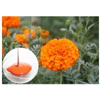 Buy cheap CAS 127 40 2 Lutein Marigold Flower Extract , Marigold Extract Powder For Tablets from wholesalers