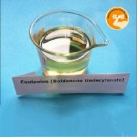 China Clean Yellow liquid Boldenone Undecylenate EQ Equipoise CAS 13103 34 9 wholesale