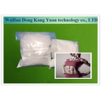 China Androgenic Steroid Testosterone Undecanoate Powder 5949-44-0 For Increase Strength wholesale