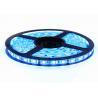 Buy cheap 12V Colour Changing LED Strip Lights , Dimmable LED Strip Lights Multi Colour 5m from wholesalers