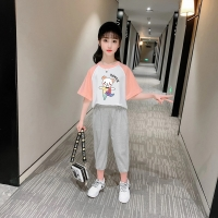 China ODM Spring Worsted Casual T Shirts Girls Tops 95% Cotton 5% Spandex wholesale