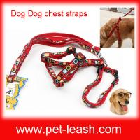 China Bone footprints plaid Chest and back and pulling on the rope QT-0077 wholesale