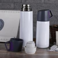 China hot sale High Quality low price Free sample new Top-level  oem/odm Fashion business stainless stee thermos bottle wholesale