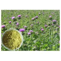 Buy cheap Liver Protection Silybum Marianum Extract Light Yellow Powder CAS 65666 07 1 from wholesalers