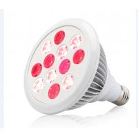 China Led Light 24W Red 660nm and Near Infrared 850nm LED Therapy Light Bulbs for Skin and Pain Relief wholesale