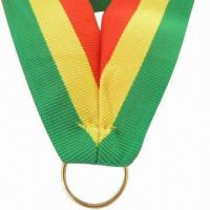 China Medal ribbon lanyard/bright promotional fashion neck lanyard/ID card holder strap/birthday giveaways wholesale