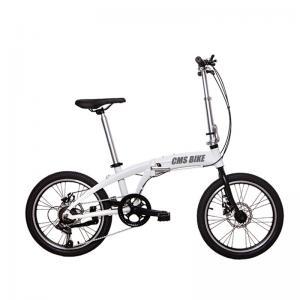 China 20 Inch Aluminum Alloy Variable Speed Portable Folding Bike wholesale