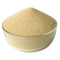 China High Activity Feed Enzymes In Poultry Nutrition Cream White Powder Fat Utilization Improvation on sale