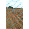 China hand push single row corn and bean planter wholesale