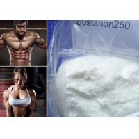 China Raw Powder Sustanon 250 Bodybuilding Testosterone Blend for Strong Bones and Muscle Mass on sale