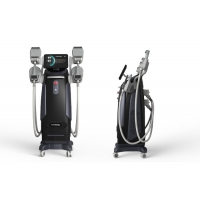 China Beauty Slimming Muscles Stimulate 310us Ems Sculpting Machine 5000w Power wholesale
