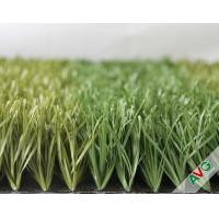 Buy cheap Stem Grass 13000Dtex Strong Blade Autumn And Spring Color Series from wholesalers