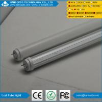China hottest sale LED light tube light T8 LED tube/LED tube wholesale