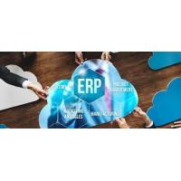 China BENEFITS Enterprise Resource Planning Systems / Cloud ERP Software For HCM software on sale