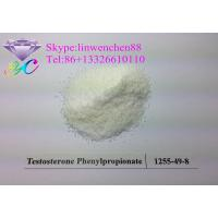 China Testosterone Phenylpropionate Bodybuilding Steroid Testosterone Powder white powder Shipping in North America wholesale