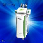 China Fat dissolving cryolipolysis machine / vacuum slimming beauty machine with Bottom Price wholesale