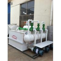 Quality RPP  water injection vacuum pump set for sale