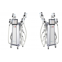 China CE LCD 3.5 Inch Touchscreen Cryolipolysis Slimming Machine wholesale
