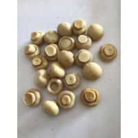China 190g Canned Common Cultivatea Mushroom Whole / Pieces And Stems wholesale