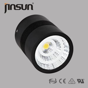 China IP65 IP20 IP40 COB LED surface mounted downlight wholesale
