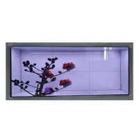 China Custom Interactive Touch 4K Transparent Lcd Screen Display Boxes, Transparent Lcd Panel Touch Display Screen wholesale