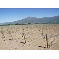 China Recycle Metal Grape Trellis Wire Slot Provides Complete Control Trellis Wires on sale