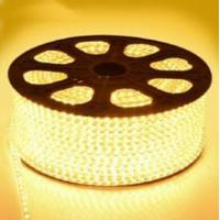 China 220V High Voltage LED Flexiable Strips SMD5050 2835 3528 RGB multicolor IP67 22LM wholesale