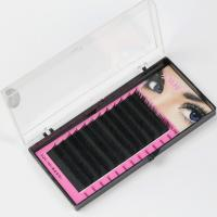 Buy cheap Black Full Set D Curl Eyelash Extensions , Individual Salon Eyelash Extensions from wholesalers