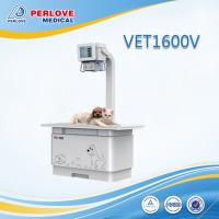 China Diagnostic X ray system VET1600V for pet radiography wholesale